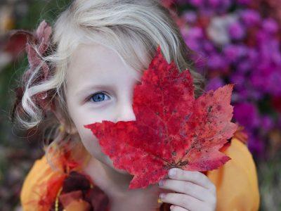 Oznam o prevádzke materských škôl počas jesenných prázdnin